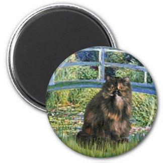 Bridge - Persian Calico cat Magnets