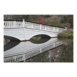 Bridge reflecting on pond, Magnolia Photo Print