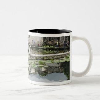 Bridge reflection, Hong Cun Village, Yi Two-Tone Coffee Mug
