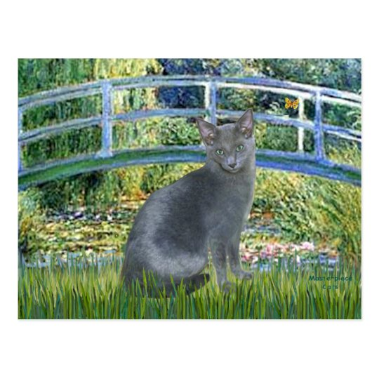 Bridge - Russian Blue cat 2 Postcard