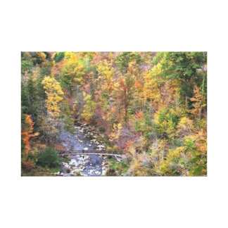 Bridge Wilderness Gallery Wrapped Canvas