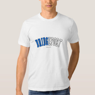 Bridgeport in Connecticut state flag colors Tees