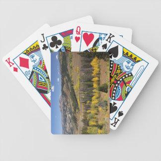 Bridger-Teton National Forest Bicycle Playing Cards