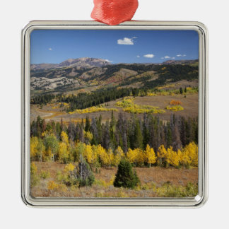 Bridger-Teton National Forest Christmas Ornament