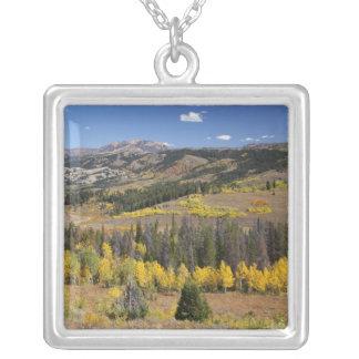Bridger-Teton National Forest Custom Jewelry