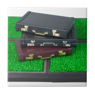 BriefcasesOnLawn061315.png Tile