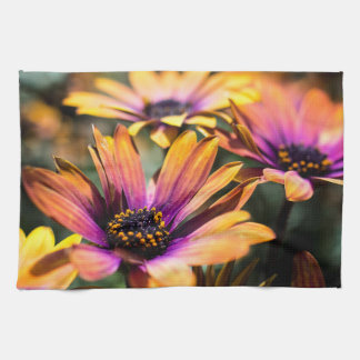 Bright and colourful daisy tea towels