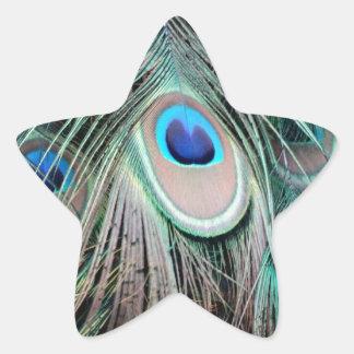 Bright And Shiny Peacock Eyes Star Sticker
