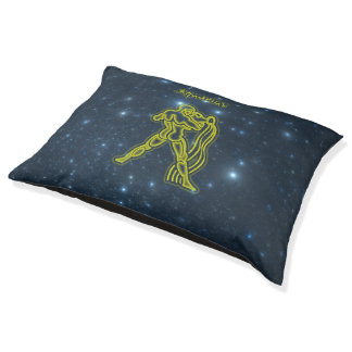 Bright Aquarius Pet Bed