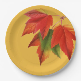 Bright Autumn Leaves Paper Plate