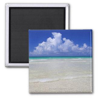 Bright beach magnet