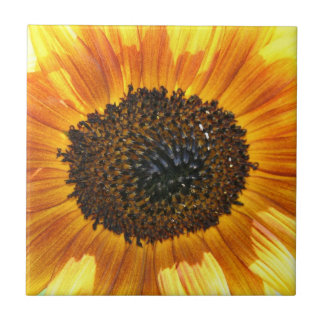 Bright Beautiful Sunflower Tile