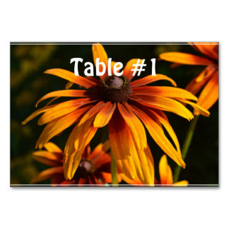Bright Black Eyed Susan Table Cards
