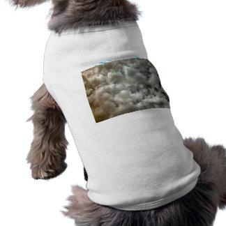 Bright blotchy clouds dog clothing