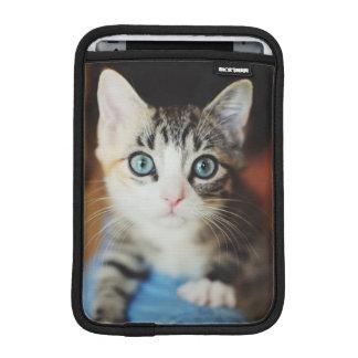 Bright Blue Eyed Kitten iPad Mini Sleeve