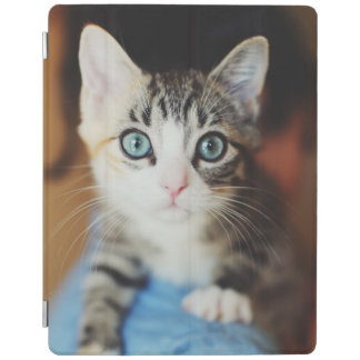 Bright Blue Eyed Kitten iPad Smart Cover