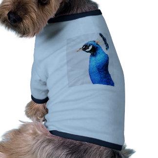 Bright Blue Peacock Dog Clothing