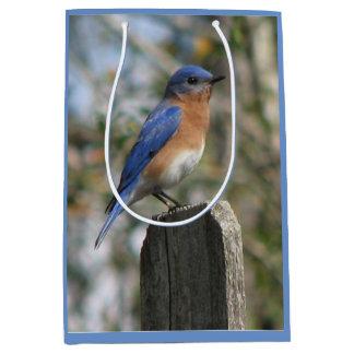 Bright Bluebird Male Medium Gift Bag