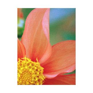 Bright burst flower gallery wrap canvas