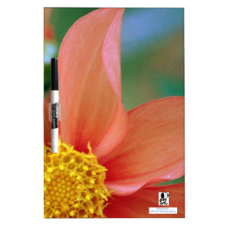 Bright Burst Flower Dry Erase Board