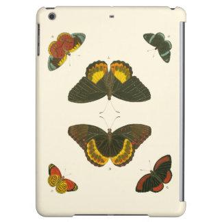 Bright Butterflies by Pieter Cramer