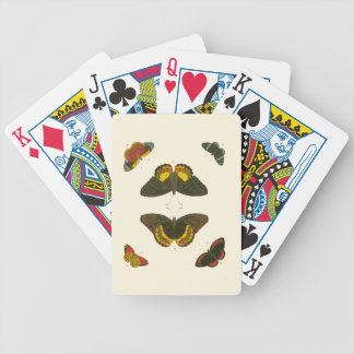 Bright Butterflies by Pieter Cramer Bicycle Playing Cards