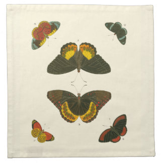 Bright Butterflies by Pieter Cramer Napkin