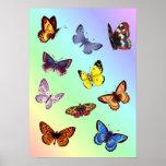 Bright Butterflies Print