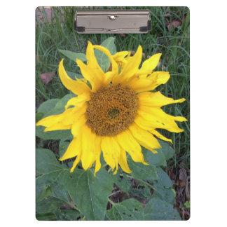 Bright Cheery Yellow Sunflower Clipboard