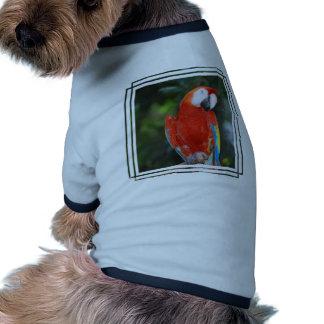 Bright Colored Parrot Pet T Shirt