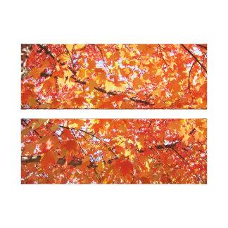 Bright Colorful Nature Canvas prints Autumn Leaves