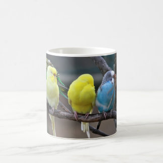 Bright Colorful Parakeets Budgies Parrots Birds Coffee Mug