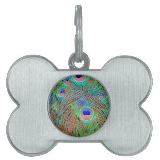 Bright Colorful Peacock Feathers Pet Name Tag