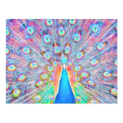 Bright Colorful *Peacock* Spirit Design Post Card