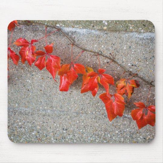 Bright coloured autumn leaves mousepad