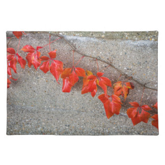 Bright coloured autumn leaves placemat
