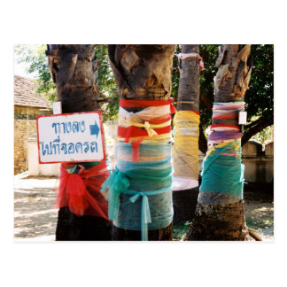Bright Coloured Cloth Tied Around Trees Post Card