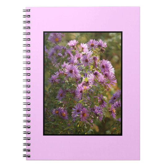 Bright,  Colourful Aster Spiral Notebook