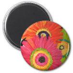 Bright & Colourful Gerbera Daisies 6 Cm Round Magnet