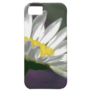 Bright Daisy Flower iPhone 5 Cover