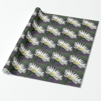 Bright Daisy Flower Wrapping Paper