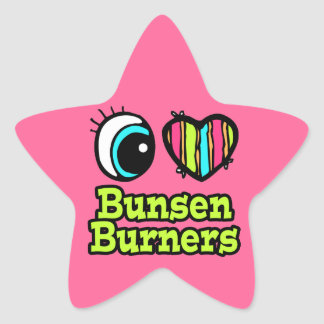 Bright Eye Heart I Love Bunsen Burners Star Sticker