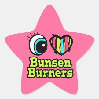 Bright Eye Heart I Love Bunsen Burners Star Stickers