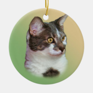 Bright-eyed Inquisitive Cat Ornament