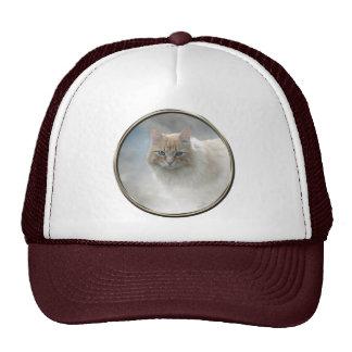 Bright Eyes Cat hat ...© Angel Honey, 2010