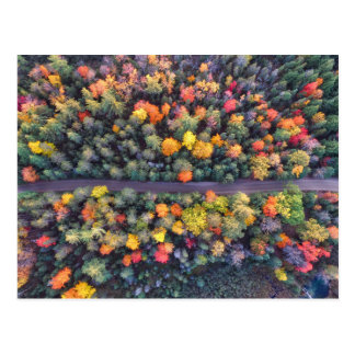 Bright Fall Colors Road, Aerial View Postcard
