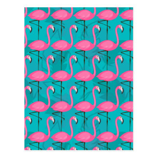 Bright Flamingo Pattern 2 Postcard