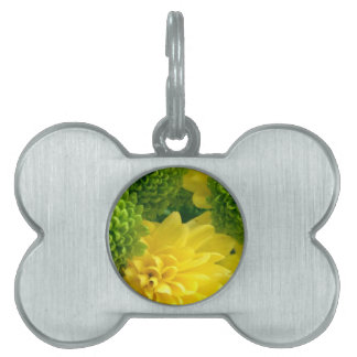 Bright floral pet ID tag
