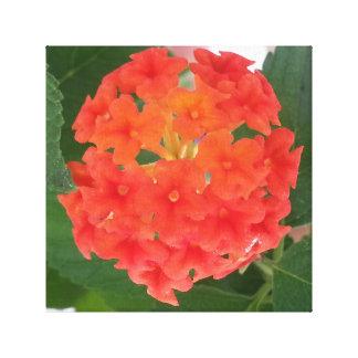 Bright flower cluster canvas print