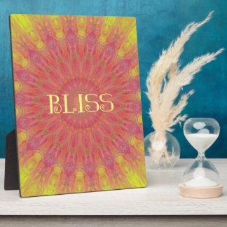 Bright Fluorescent Circular 'Bliss' Mandela Display Plaques